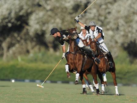 Polo in Sotogrande, Spain